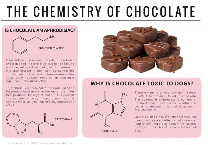 chemistry-resources-The Chemistry of Chocolate
