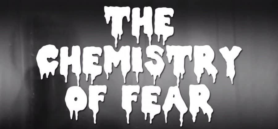 The-Chemistry-of-Fear-Bytesize-Science
