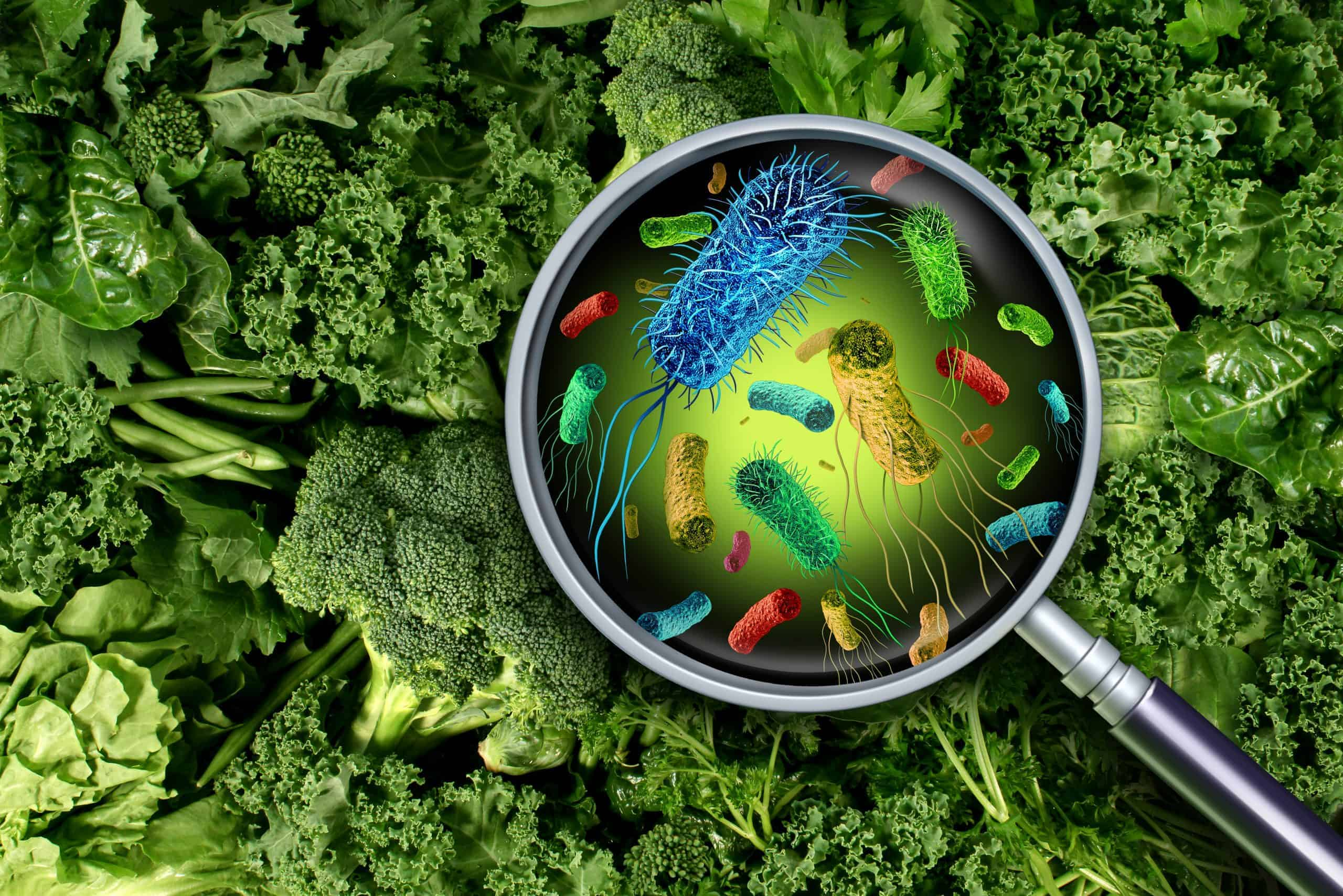 Bacteria and germs on vegetables under magnifying glass