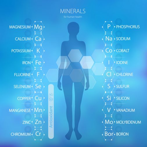Graphic showing different minerals needed by the body