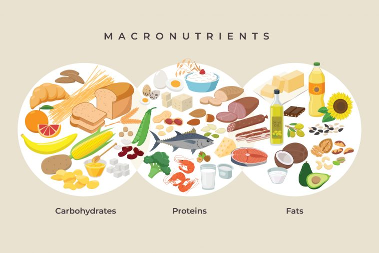 Main,Food,Groups,-,Macronutrients.,Carbohydrates,,Fats,And,Proteins,In